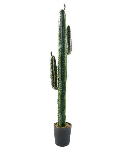 Künstlicher Kaktus Cereus, ca. 160cm