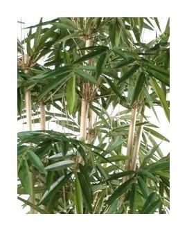 Bambus - Kunstbambus